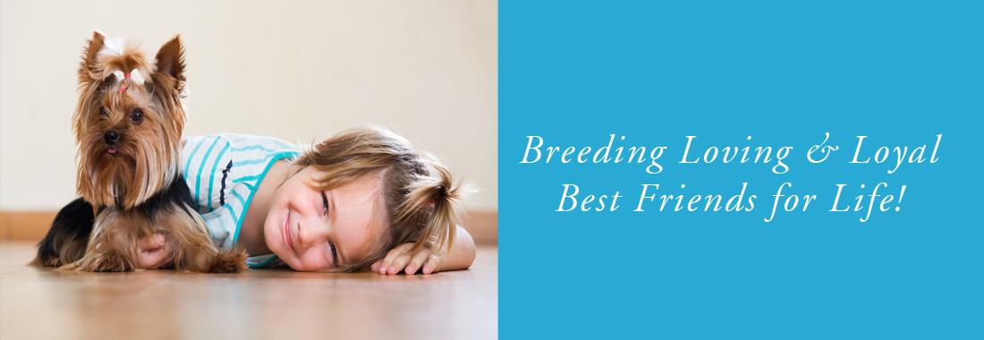 Ivan Mast Dog Breeder Home Page